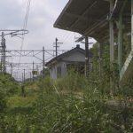 Fukushima 10